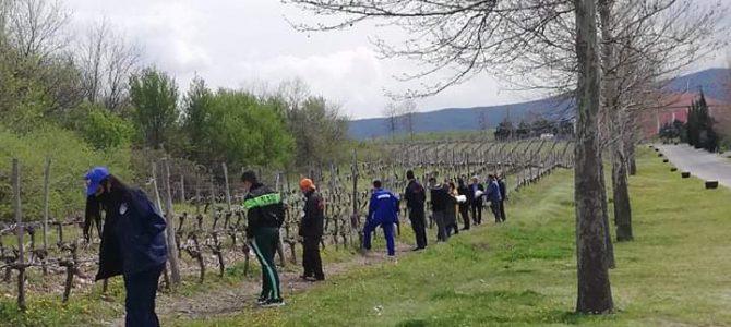 """Възпитаниците на ПГМСС """"Ернесто Че Гевара"""" – с. Бояново се представиха достойно на състезание """"Млад фермер"""""""